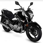 Yamaha-Fazer-2013
