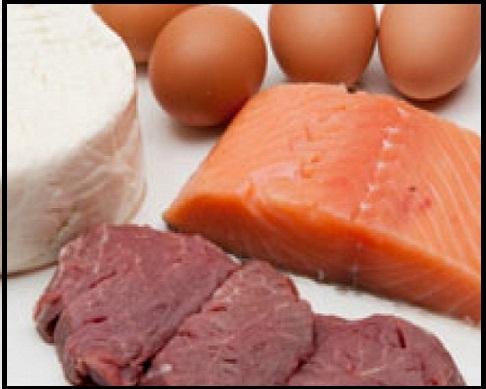 Alimentos sem Carboidratos: Quais São