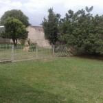 area-de-lazer-residencial-para-caes-3