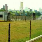 area-de-lazer-residencial-para-caes-4