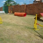 area-de-lazer-residencial-para-caes-5