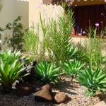 decoração-de-jardim-externo-pequeno-7