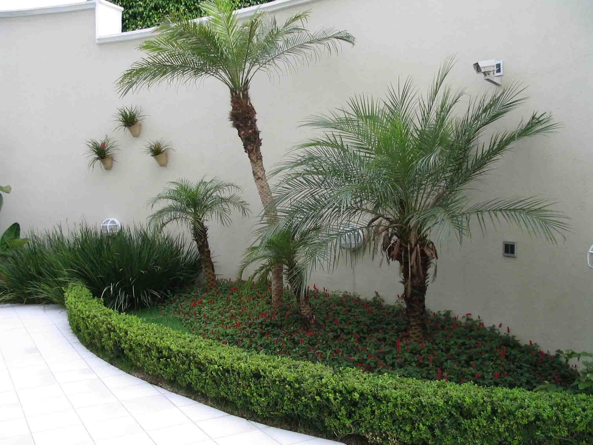 Jardim Pequeno Fotos Pictures To Pin On Pinterest  All about loving