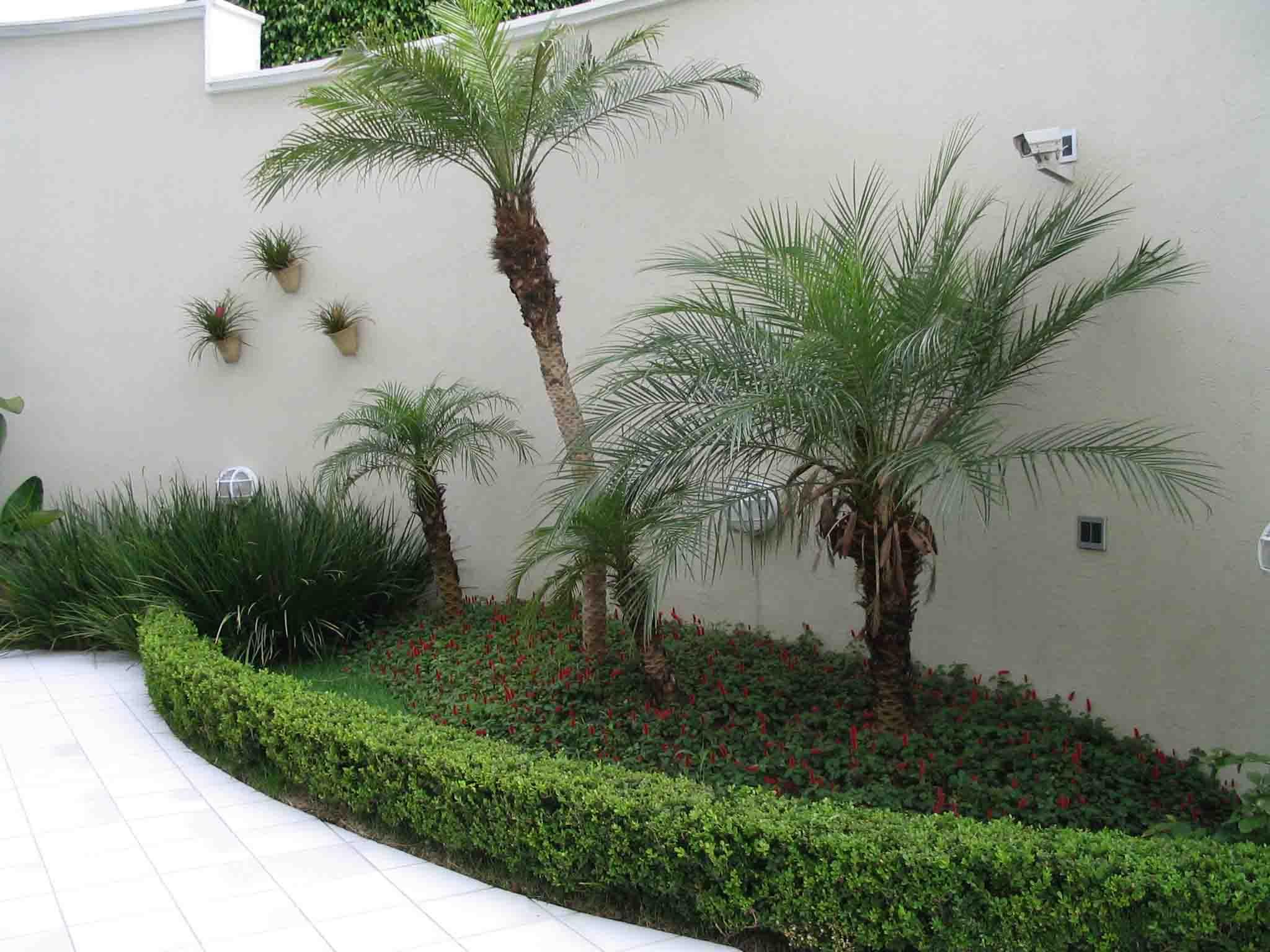 Decoração De Jardim Pequeno Externo – Fotos E Dicas Para Decorar~ Decoracao Jardim Pequeno Externo