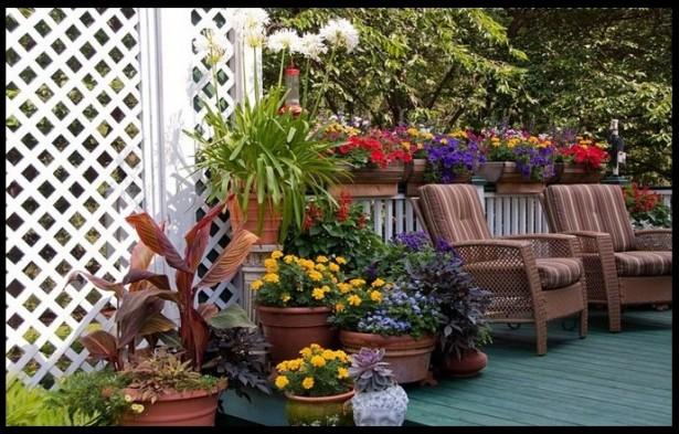 fotos de jardim externo:Decoração de Jardim Pequeno Externo – Fotos e Dicas Para Decorar