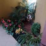 decoracao-de-jardim-externo-pequeno-8