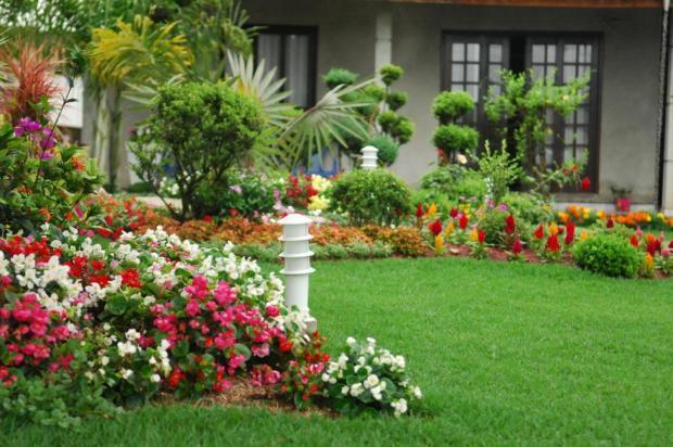 jardim ideias simples : jardim ideias simples:Jardim De Flores