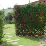decoracao-de-jardins-residenciais-simples-7