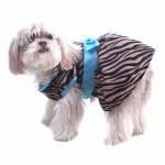 roupas-criativas-para-cachorros-5